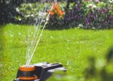 Ahorro de agua en el jardín