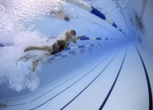 Deporte adaptado. Escuela de natación y gimnasia 2017/18
