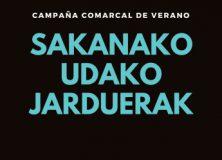 Campaña comarcal de verano