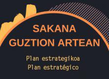 Plan  estrategikoa  |  Galdetegia