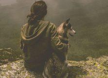 Hitzaldia: Mendi-terapia
